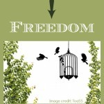 From Addiction to Freedom
