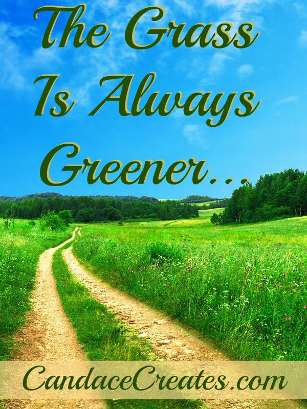 The Grass Is Always Greener: Seeking contentment...