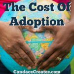 The Cost Of Adoption
